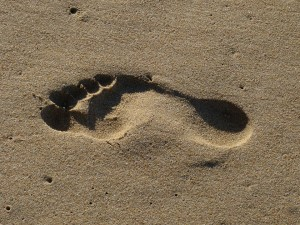 Pied-sand-1036547_960_720